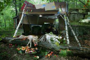 Still life with pig, 2005. Fotografía. 100 x 150 cm
