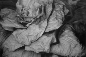 Sacos-Flor, 2013. Técnica mixta sobre photolinen, 125 x 89 cm
